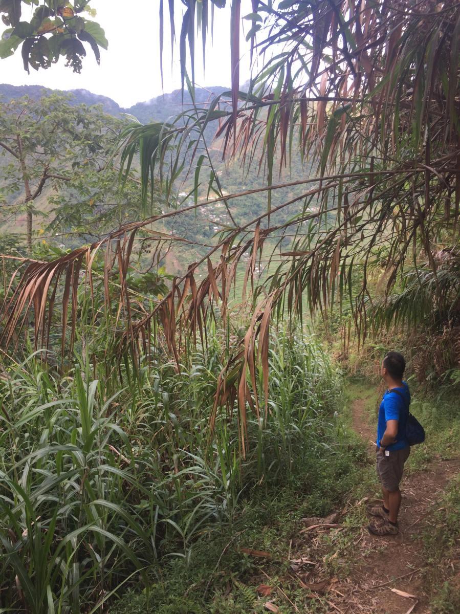 Awa ViewDeck in Batad Ifugao Travel Guide Budget (1).jpg