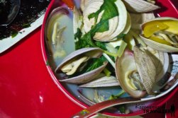 Large Clams